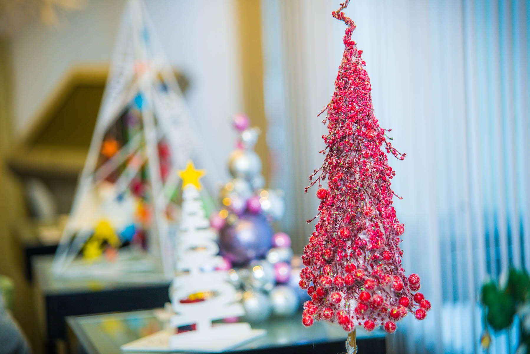 Вместе с выставкой «ЭКО-Ёлка» во ВГУЭС пришло новогоднее настроение
