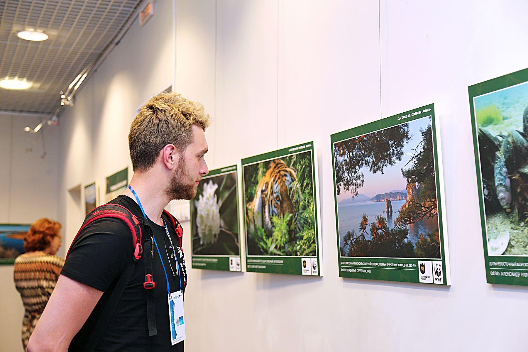 Выставка «Заповедное ожерелье Амура» в Музее ВГУЭС: уникальные фотографии животных и растений