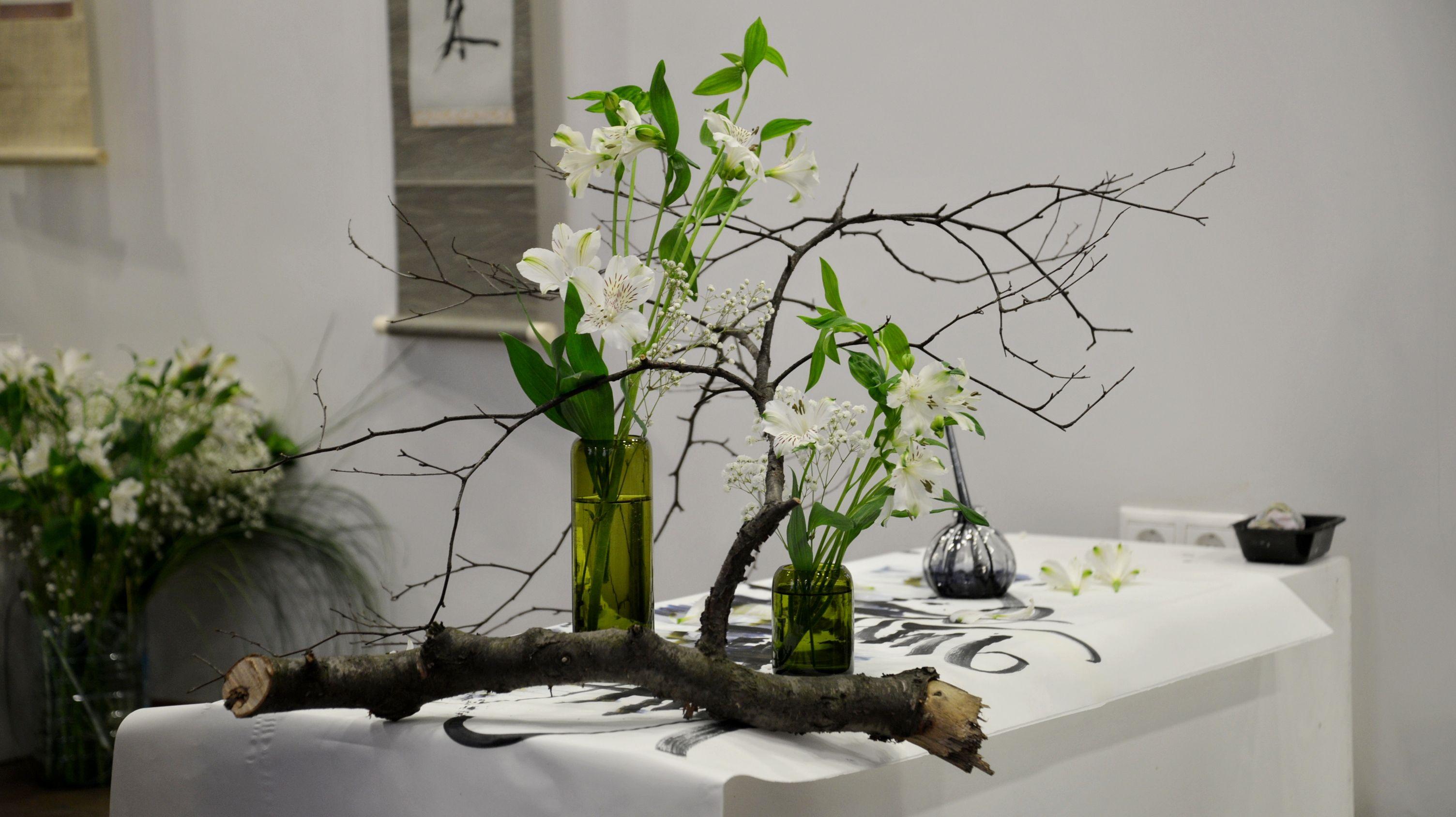«Писать душой, писать разумом» – в Музейно-выставочном комплексе ВГУЭС состоялось открытие выставки «Тушь, бумага, лепестки»