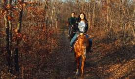 Horseback riding with a group of foreign students and volunteers of VSUES
