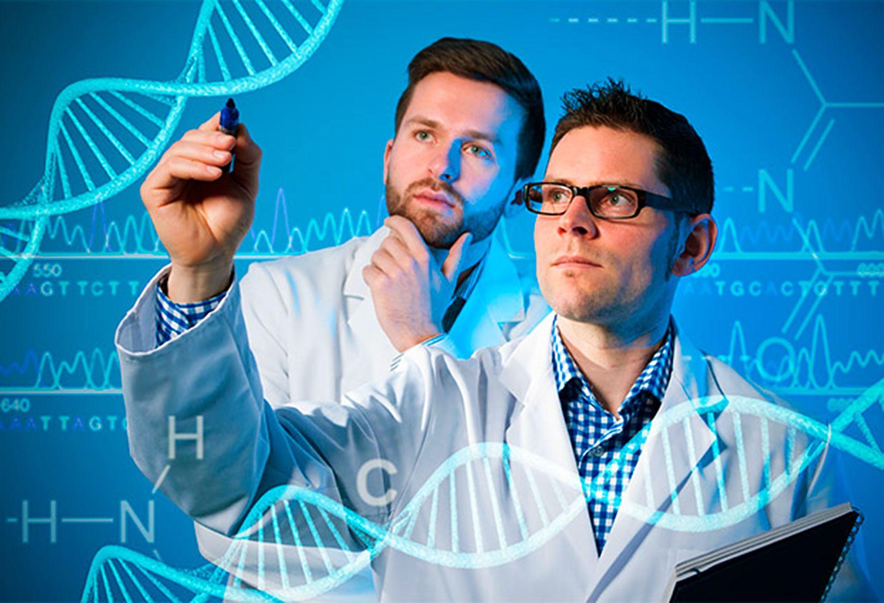 Ведущие ученые обсудят во ВГУЭС современные подходы к моделированию реакционно-диффузионных систем