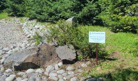 Новая жизнь экологической тропы ВГУЭС