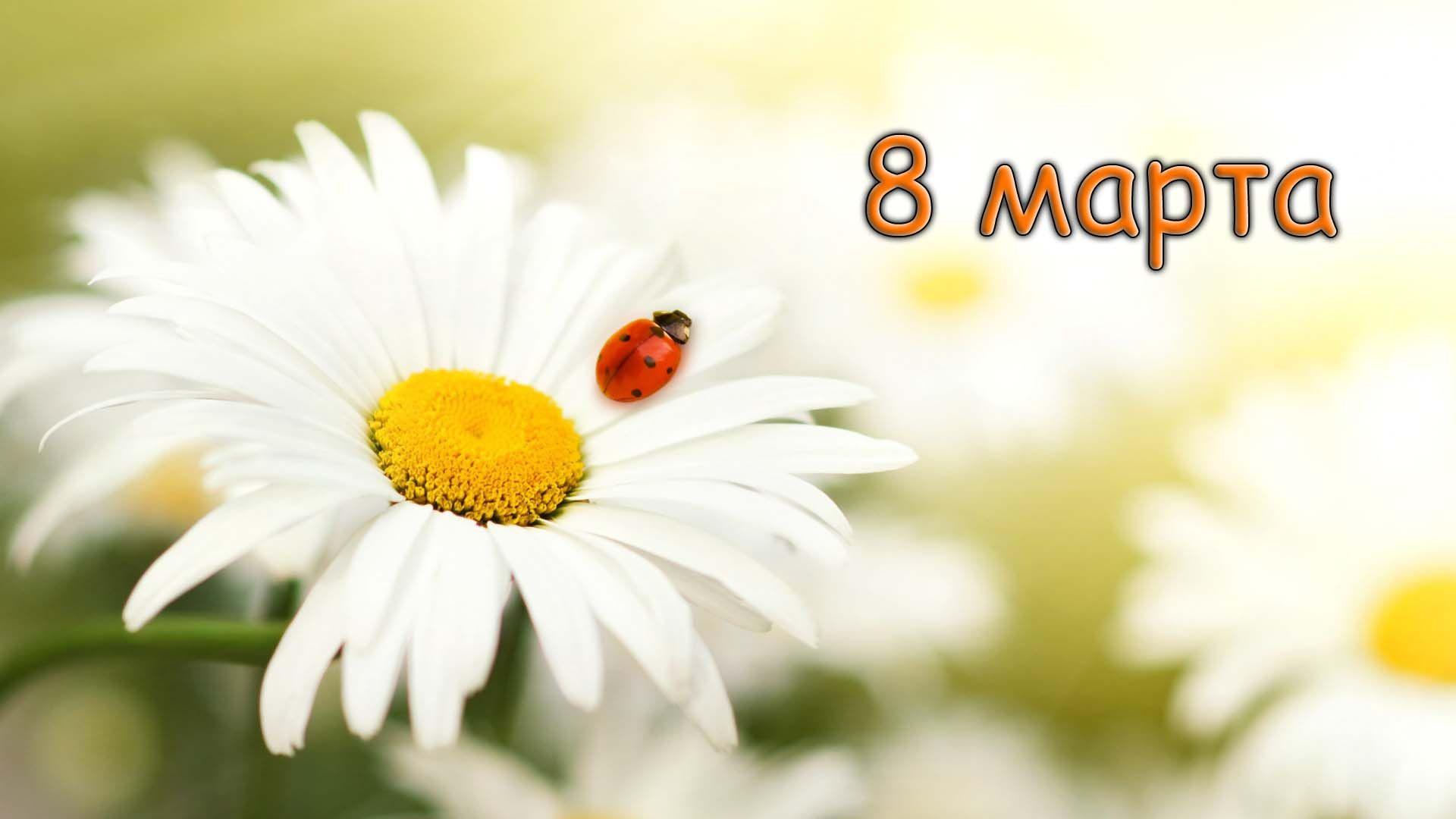 С праздником весны, прекрасные дамы!