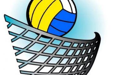 Студенты колледжа и института приняли участие в чемпионате Артемовского городского округа по волейболу среди мужских команд