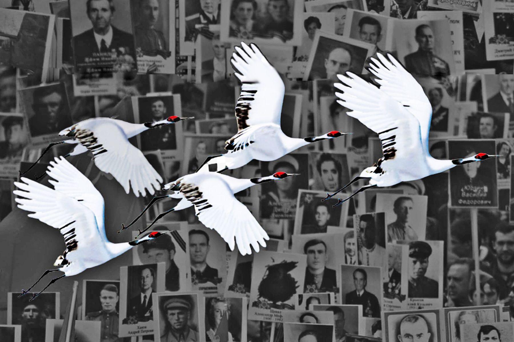 «Журавли Победы»: стань участником акции ВГУЭС – отправь портрет своего героя