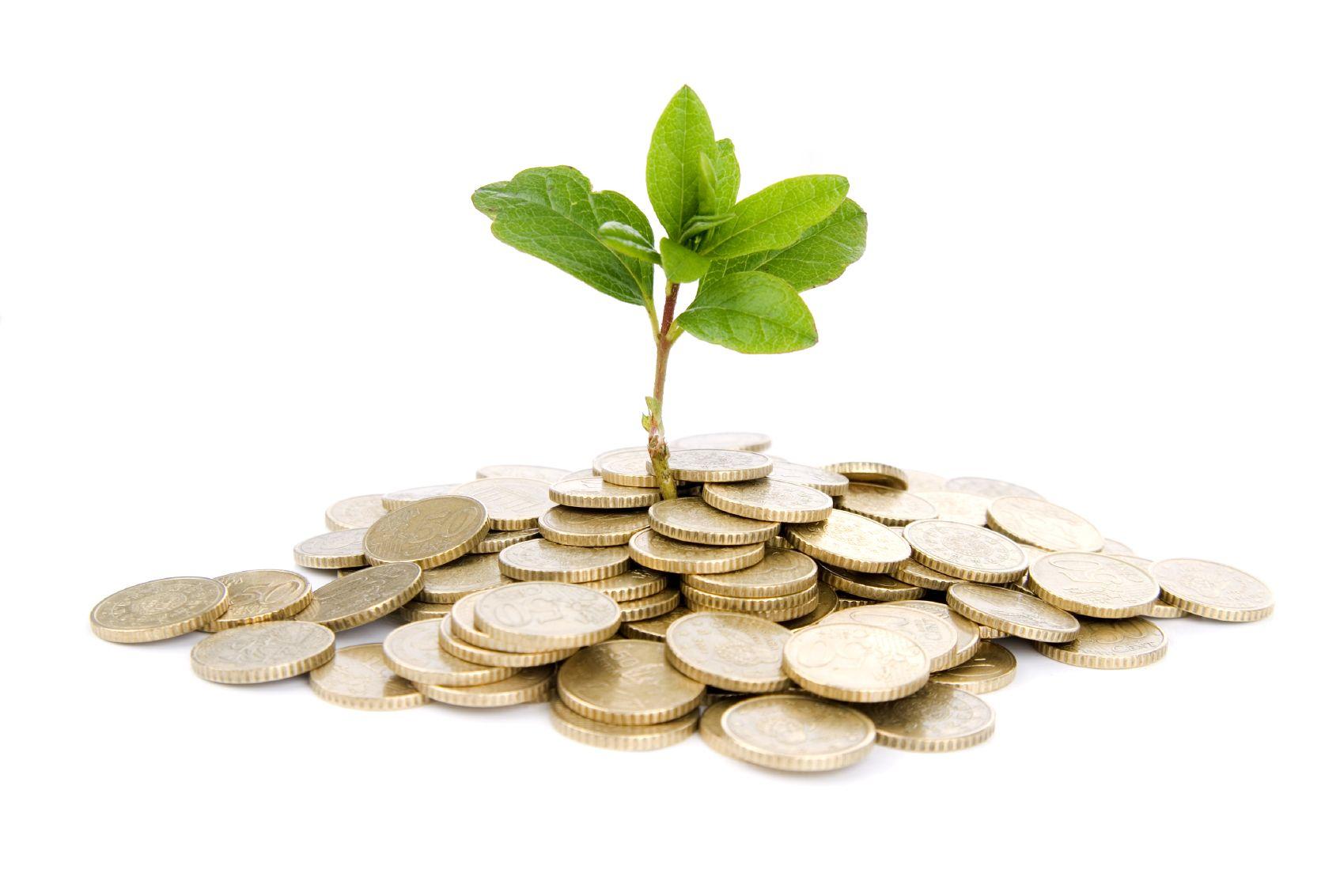 Ученый совет: Отчет о выполнении плана ФХД за 2012 г. План ФХД на 2013 г.